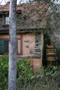 Outside of Cabin