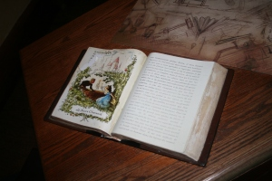 French Book prop