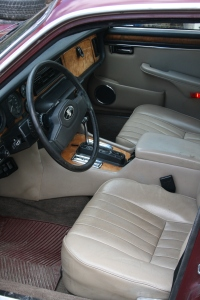 Jaguar 002