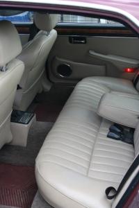 Jaguar 003