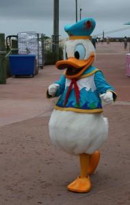 Disney Cruise Vacation 123