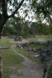 Brevard Zoo Landscape
