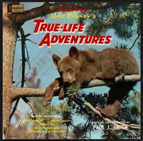 Ture Life Adventures