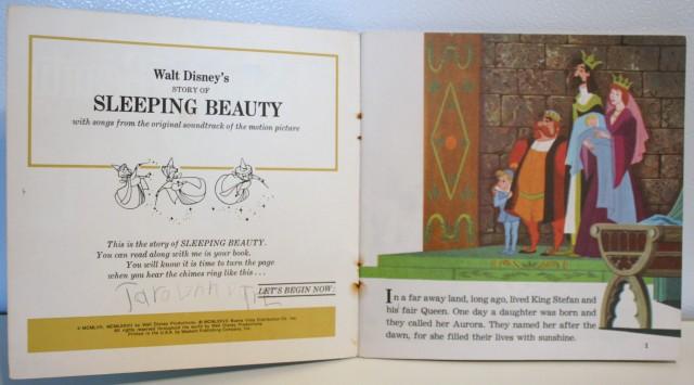 Sleeping Beauty Reading Book 3